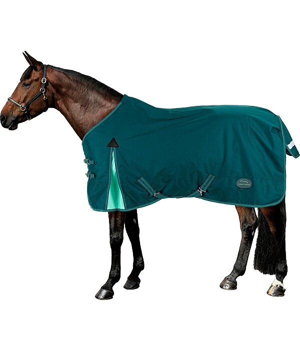 THERMO MASTER Turnout Rug Duvra with Fleece Lining, 50 g - 422204-4_6-TI